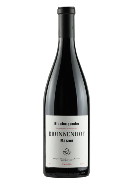 Pinot Nero Riserva Mazzon