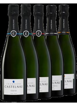 Degustazione 5 bottiglie Castelnau