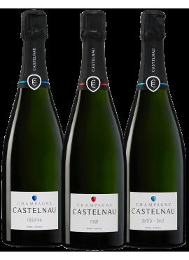 Degustazione 3 bottiglie Castelnau