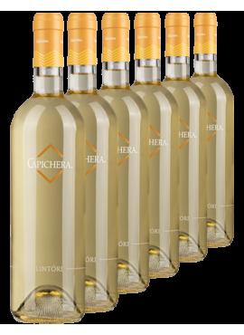 Lintori 6 bottles