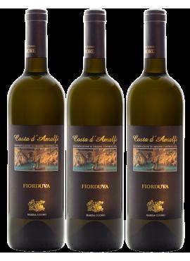 Verticale 3 bottiglie Fiorduva