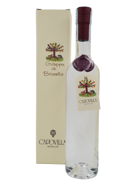 Grappa di Brunello Capovilla Distillati