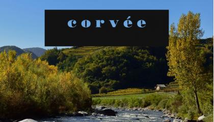 Il racconto dei vini Corvée nell'intervista a Moreno Nardin